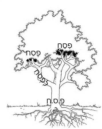 Tekening van een boom, met de Hebreeuwse letters en woorden erin geplaatst