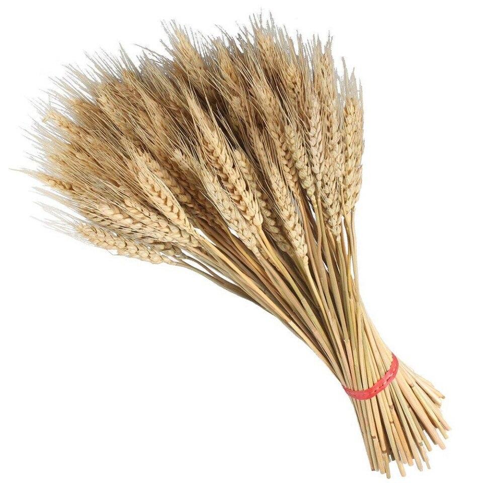 Een bundel tarwe